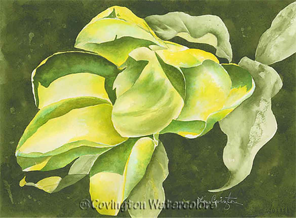 Floral Watercolors That Are Luminous & Inviting
