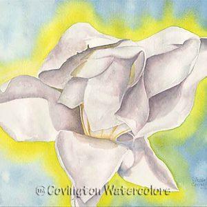 """Magnolia's Glow 12"""" x 16"""""""