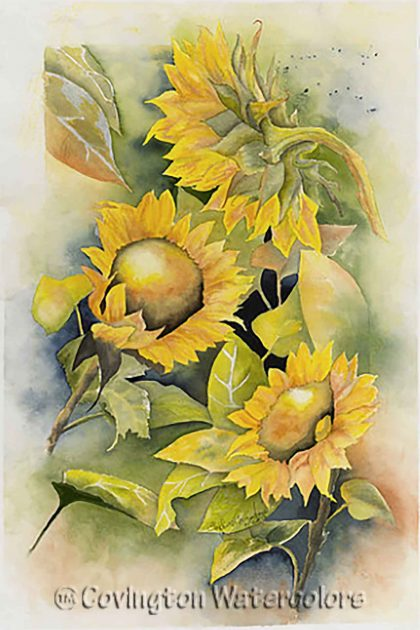 "Sunflowers 15"" X 22"""